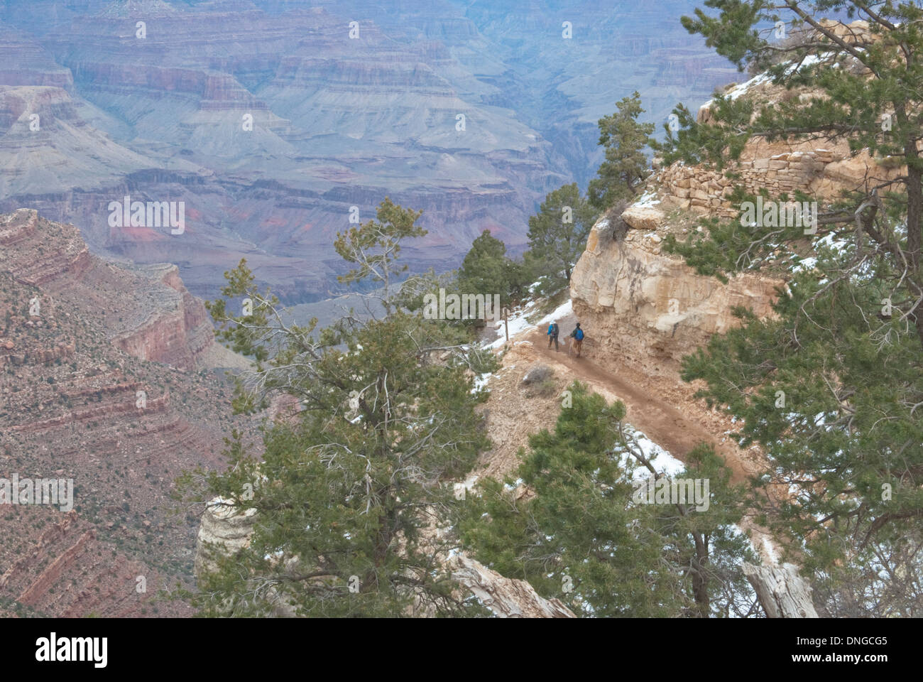 From the rim of the Grand Canyon, one can see hikers on trails far below. - Stock Image