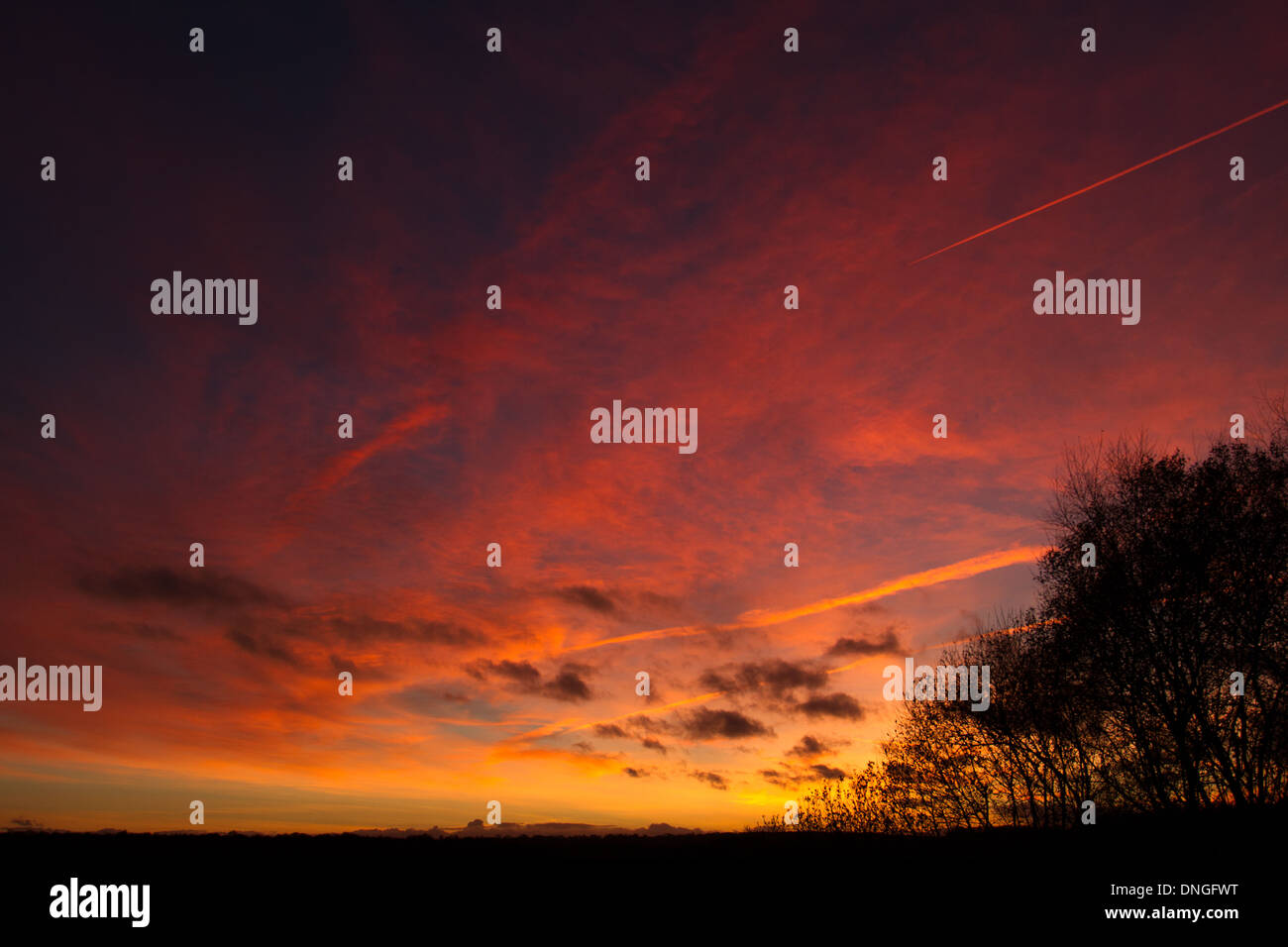 Sunset at Shapwick Heath, Somerset - Stock Image