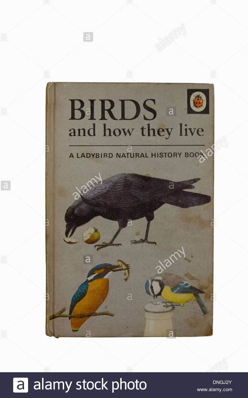 An old copy of the Ladybird book Birds and how they live from the Natural History series - Stock Image