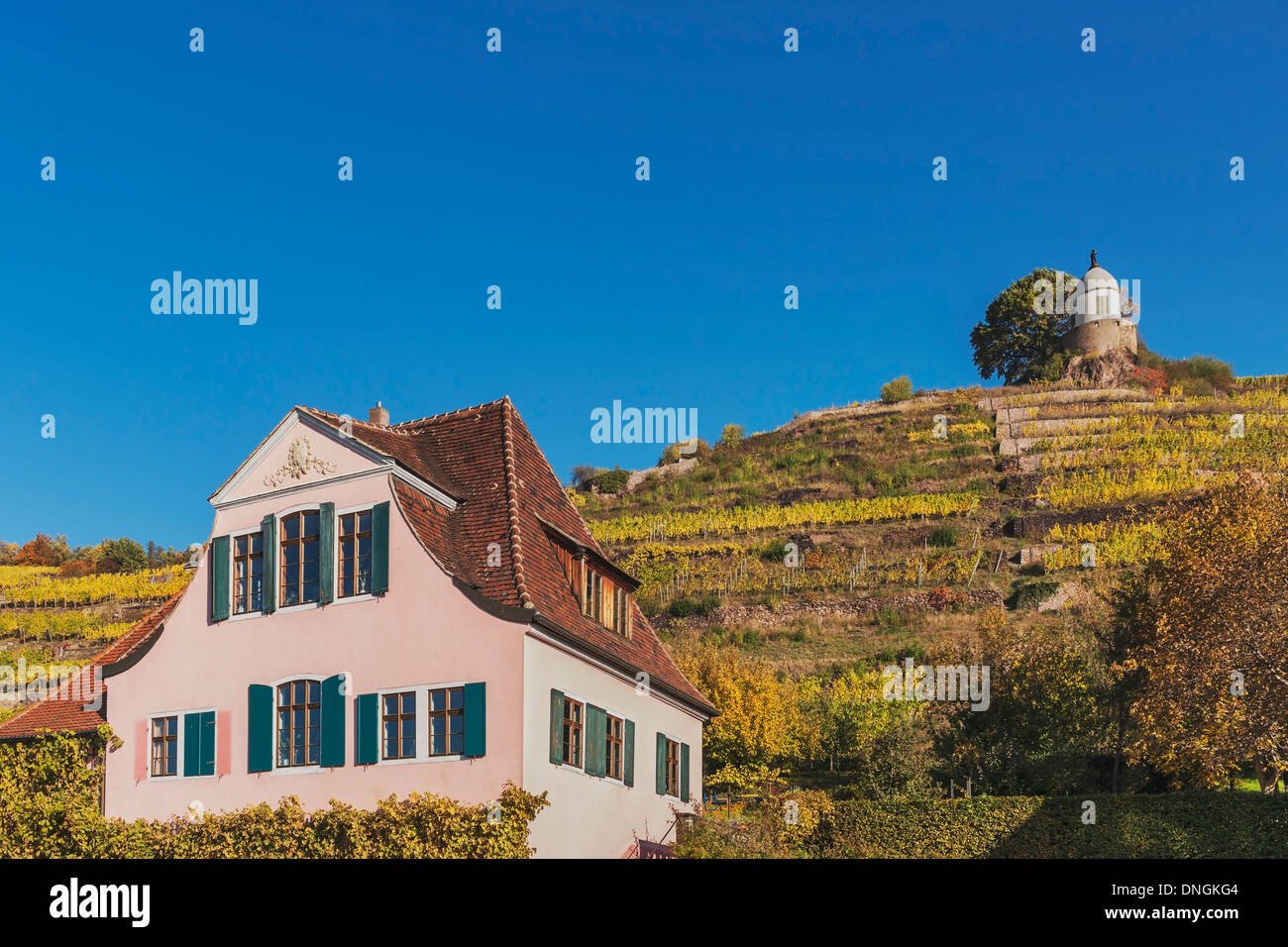 House Fliegenwedel is a Baroque winegrower's House, Radebeul near Dresden, administrative district Meissen, Saxony, Stock Photo