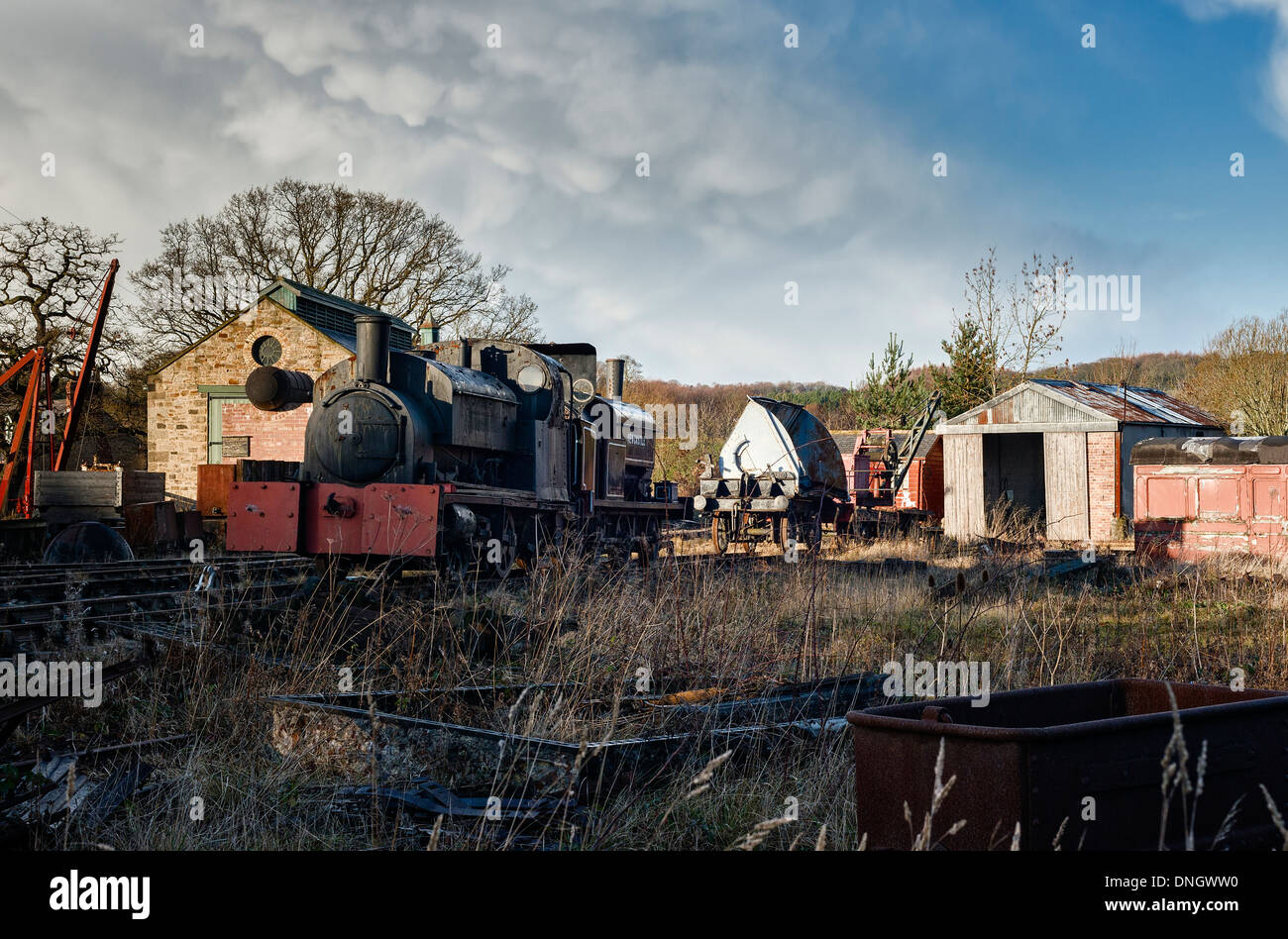 Steam locomotives and engine sheds at Beamish - Stock Image