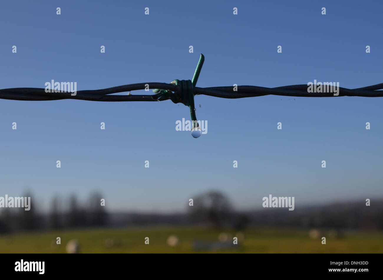 Barbed Wire Water Drop Stock Photos & Barbed Wire Water Drop Stock ...