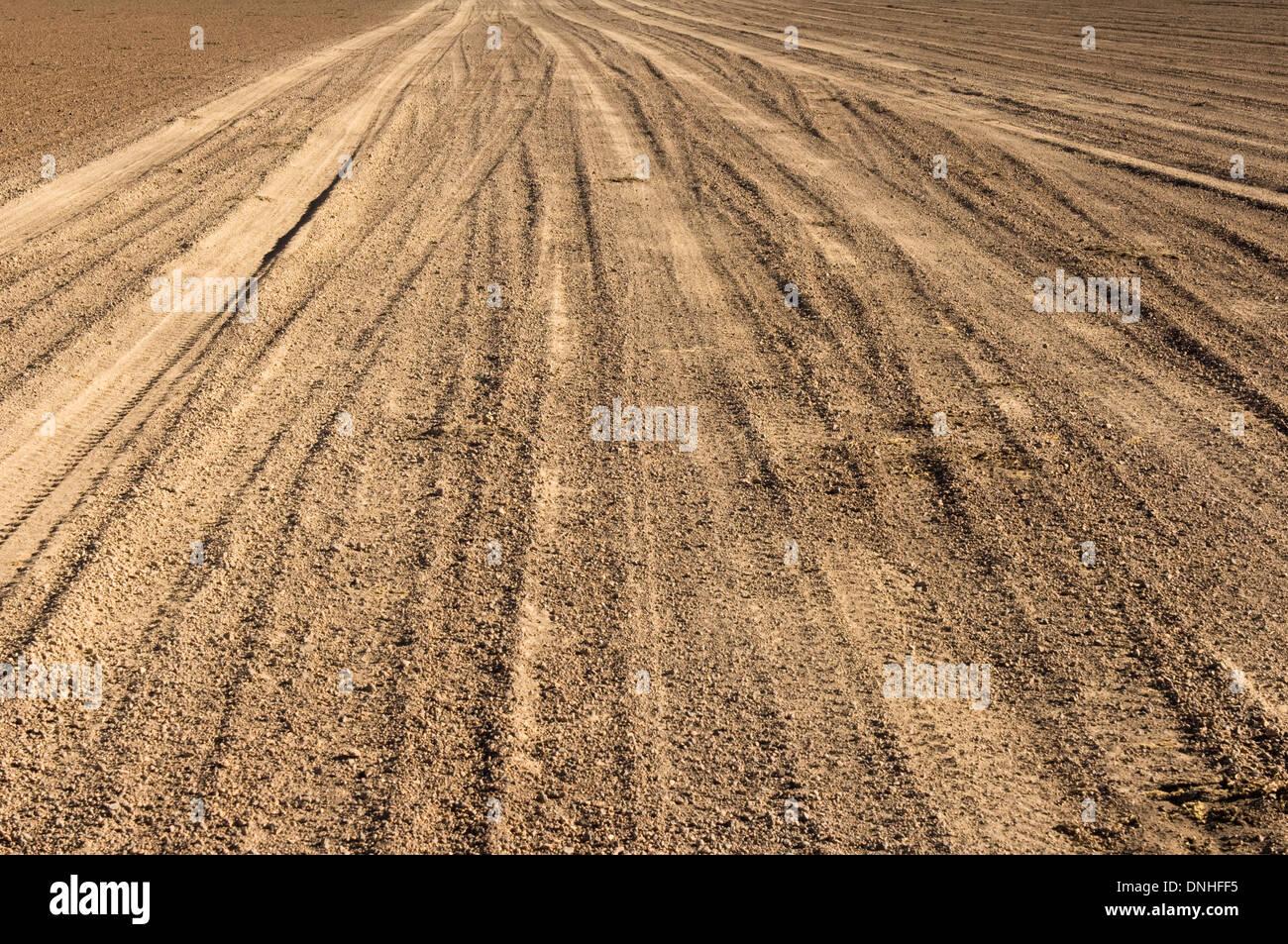 Wheel tracks, Altiplano, Potosi, Bolivia - Stock Image