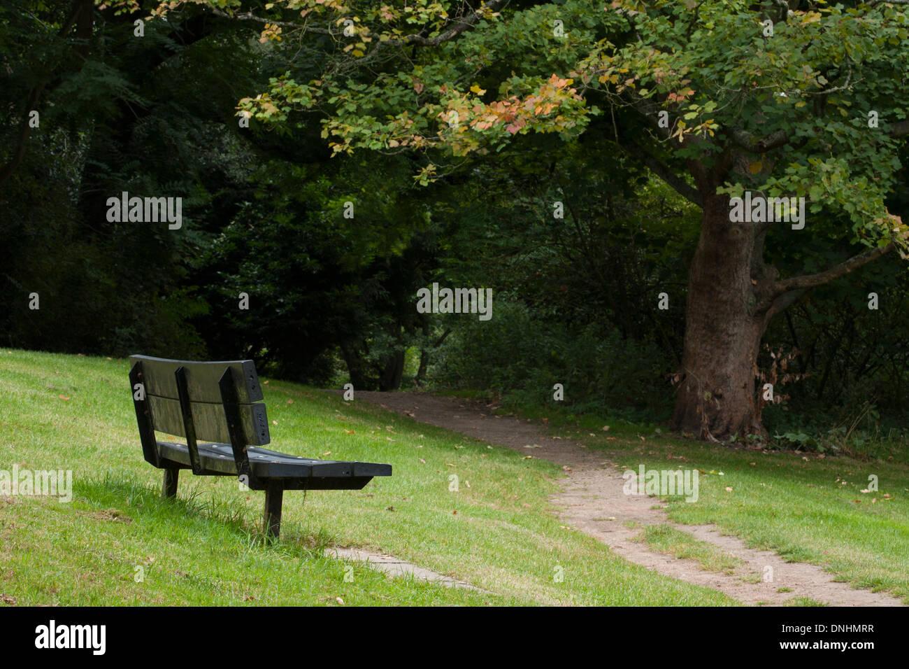 An imitation wood park bench near a gravel path in Hampstead Heath. - Stock Image