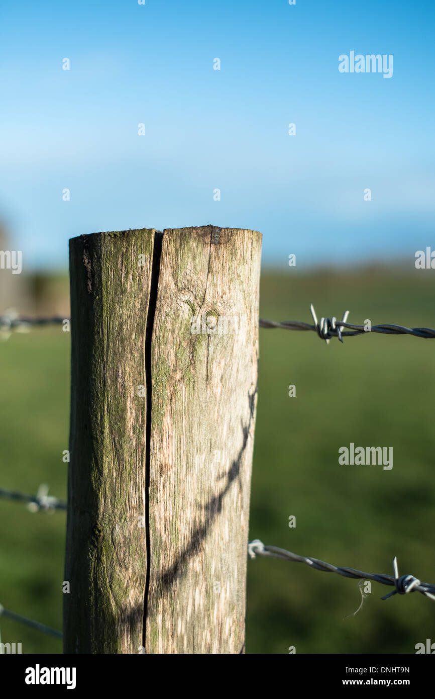 Wooden Fence Post with Barbed Wire. Stock Photo