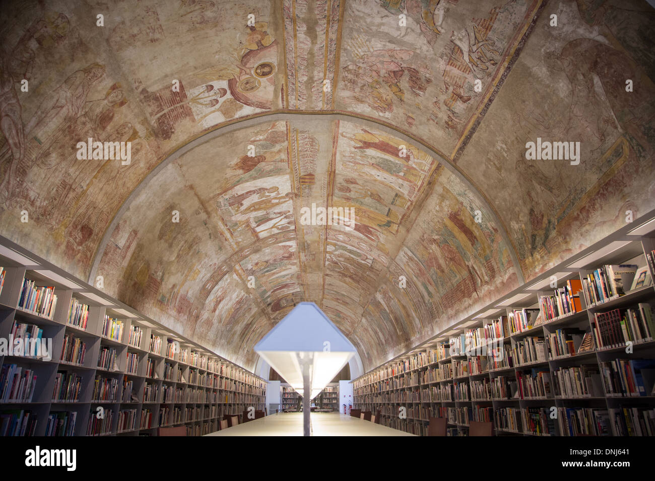REPRODUCTION OF THE VAULTED CEILING OF THE ABBEY OF SAINT-SAVIN-SUR-GARTEMPE, LIBRARY OF THE CITY OF ARCHITECTURE - Stock Image