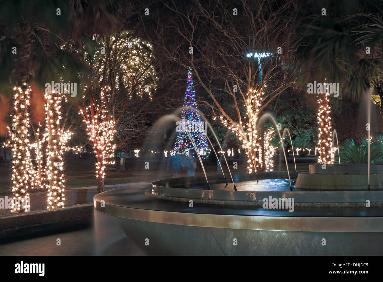 Christmas lights on Marion Square in historic Charleston South Carolina. & Christmas lights on Marion Square in historic Charleston South ...