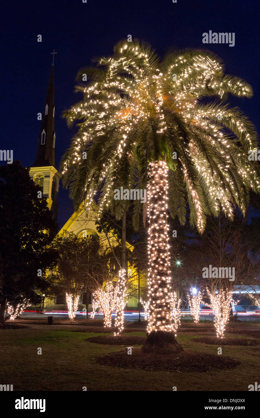 Palm Tree With Christmas Lights And Citadel Square Baptist Church On Marion  Square In Historic Charleston, South Carolina. Photo