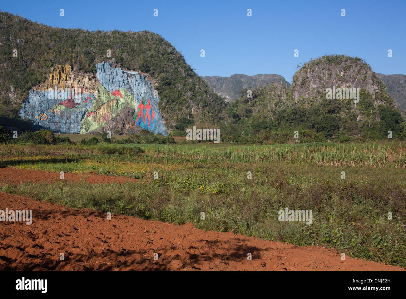 MURAL OF EVOLUTION, PREHISTORIC WALL (MURAL DE LA PREHISTORIA) COMMISSIONED BY FIDEL CASTRO IN 1961, PAINTING ON A SLOPE OF A MOGOTE (MOUNTAINOUS LIMESTONE HILLOCK), VINALES VALLEY, LISTED AS A WORLD HERITAGE SITE BY UNESCO, CUBA, THE CARIBBEAN - Stock Image