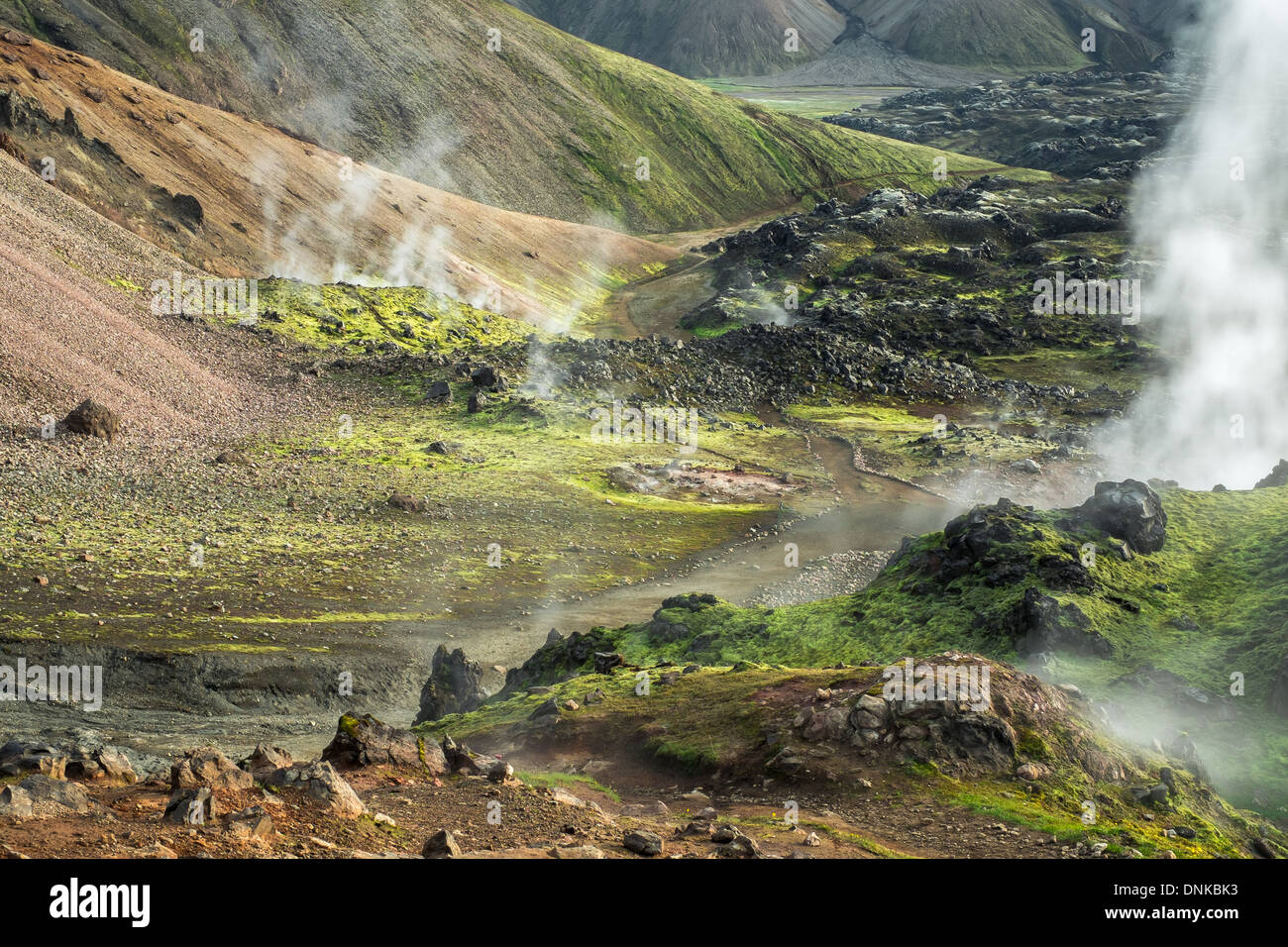 An active geothermal area with multiple steam vents, Landmannalaugar, Iceland - Stock Image