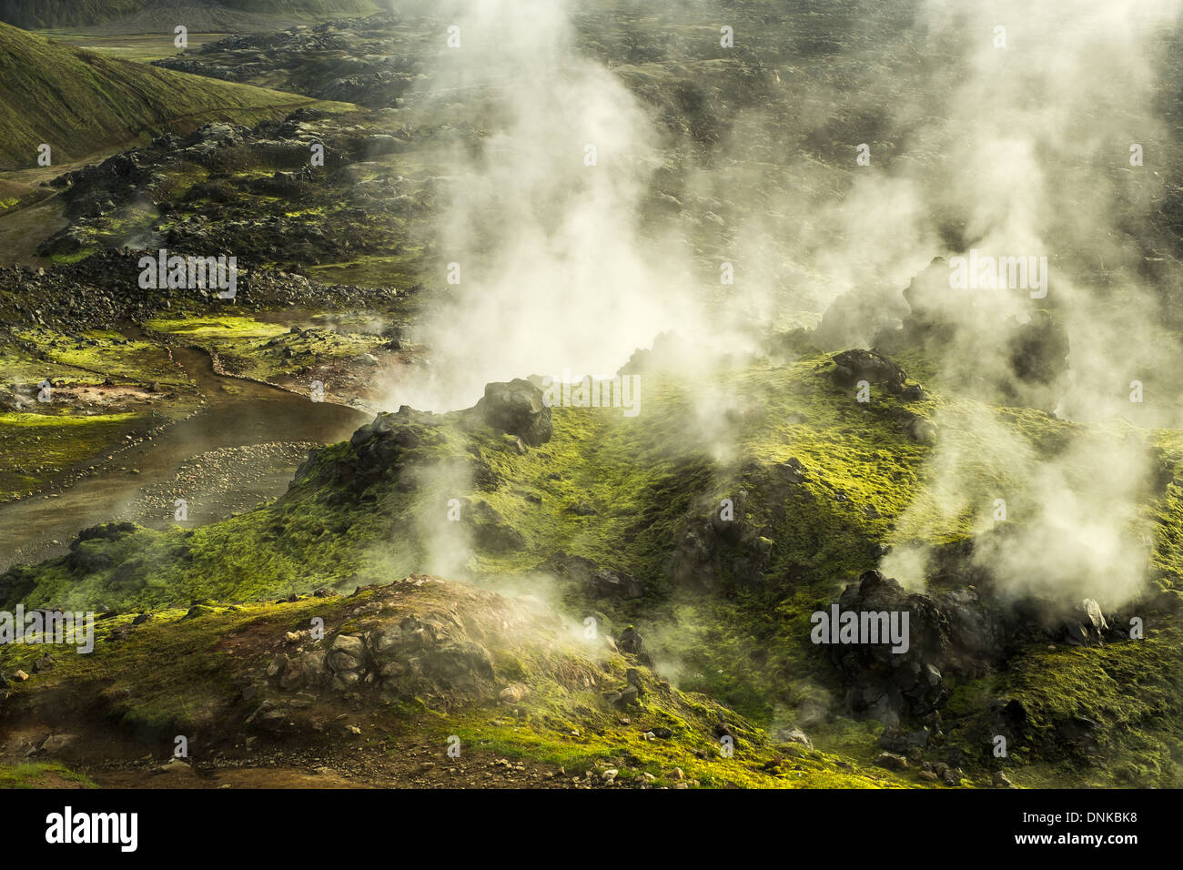 An active geothermal area with multiple steam vents, Landmannalaugar, Iceland Stock Photo