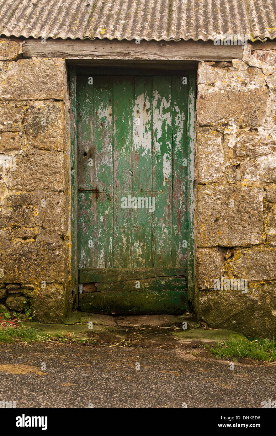 Old green door in a farm building in Cornwall. Stock Photo