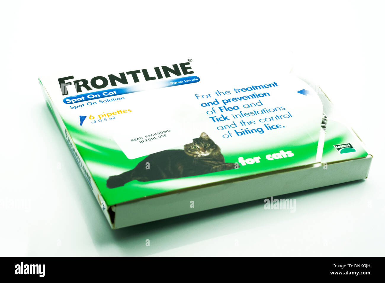 frontline flea treatment for cats in box cut out white background copy space - Stock Image