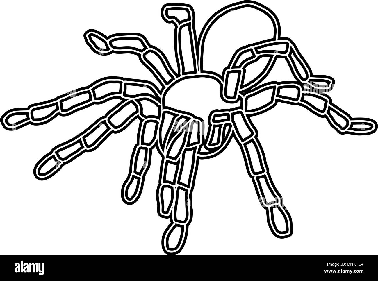Tattoo Of Black Widow Isolated On White Background Stock