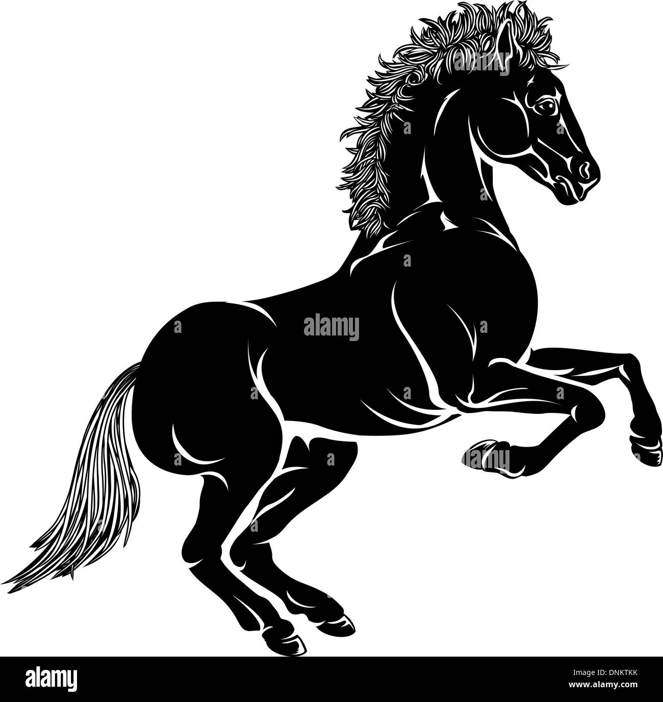 An Illustration Of A Stylised Horse Perhaps A Horse Tattoo Stock Vector Image Art Alamy