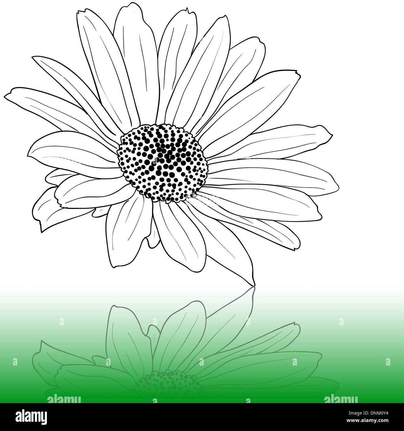 vector hand drawn illustration - Stock Image