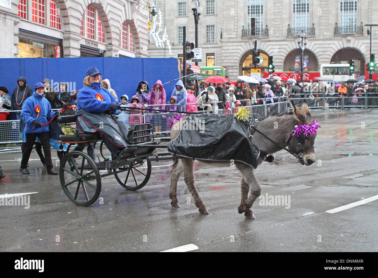 London,UK,1st January 2014,Little Donkey and cart took part in the London's New Year's Day Parade 2014 Credit: Keith Larby/Alamy Live News - Stock Image