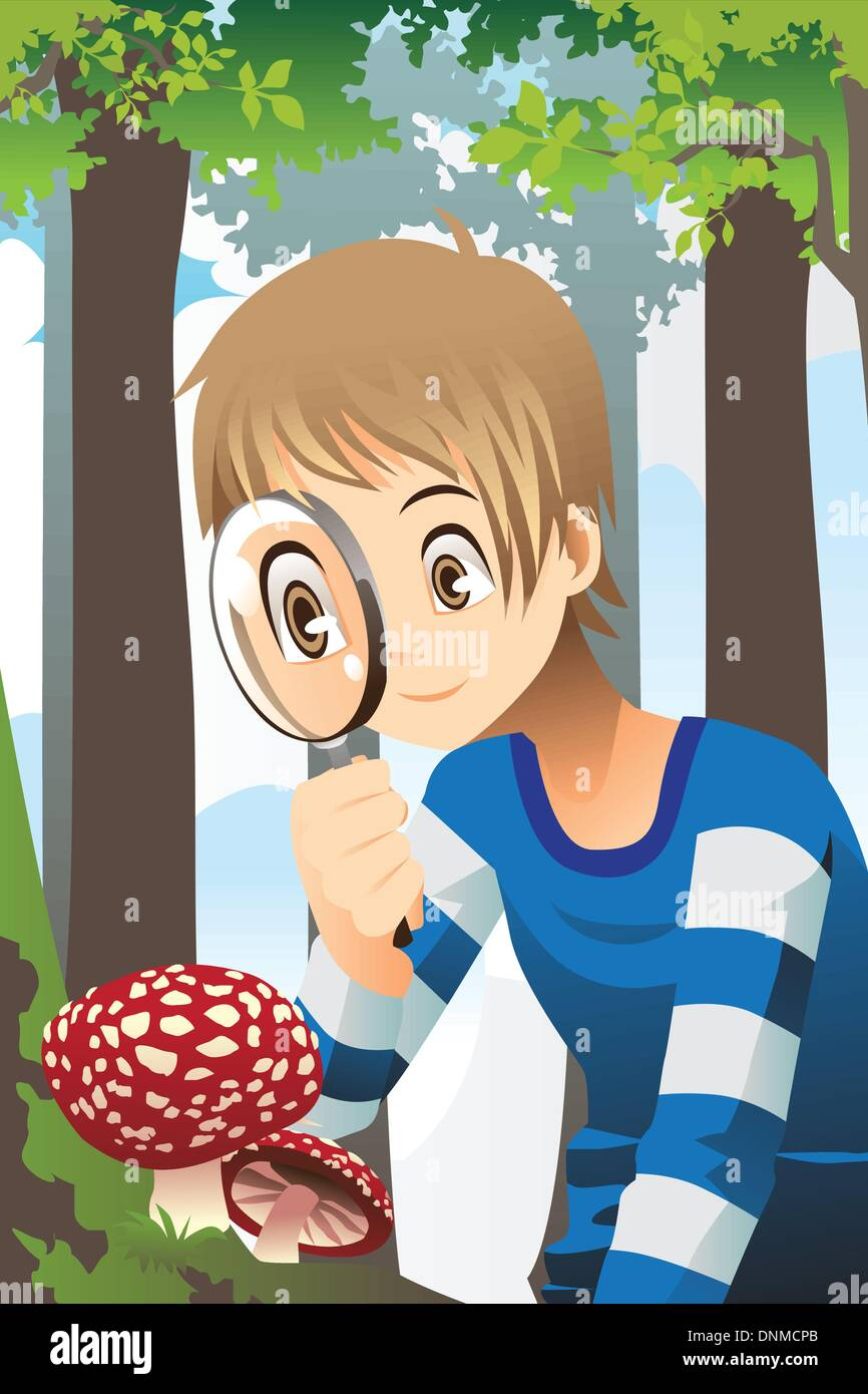 A vector illustration of a boy looking through a magnifying glass exploring wild mushroom in the forest - Stock Vector