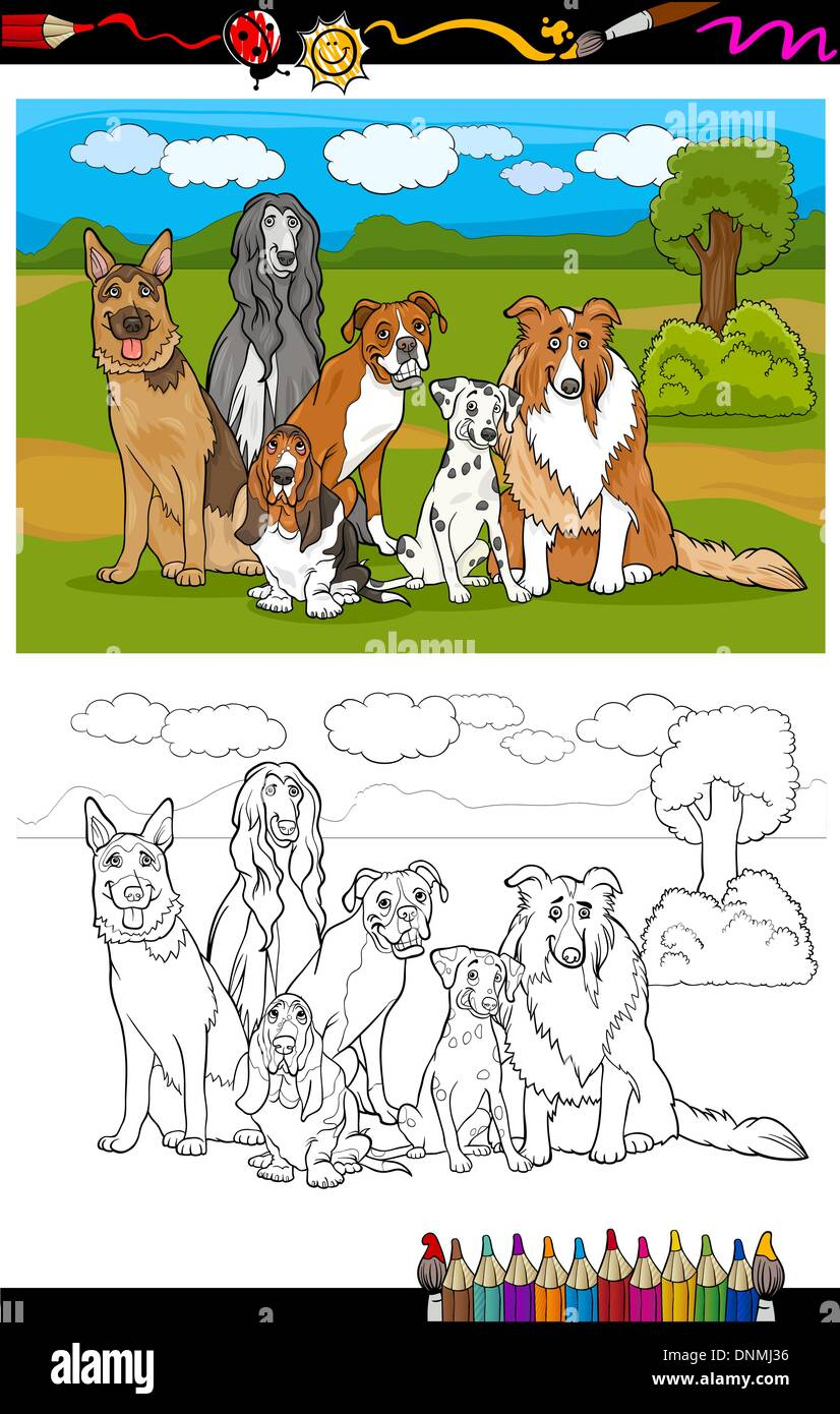 Cartoon Illustration of Funny Purebred Dogs like German Shepherd, Collie, Dalmatian, Basset Hound, Afghan Hound and Boxer for Co - Stock Vector