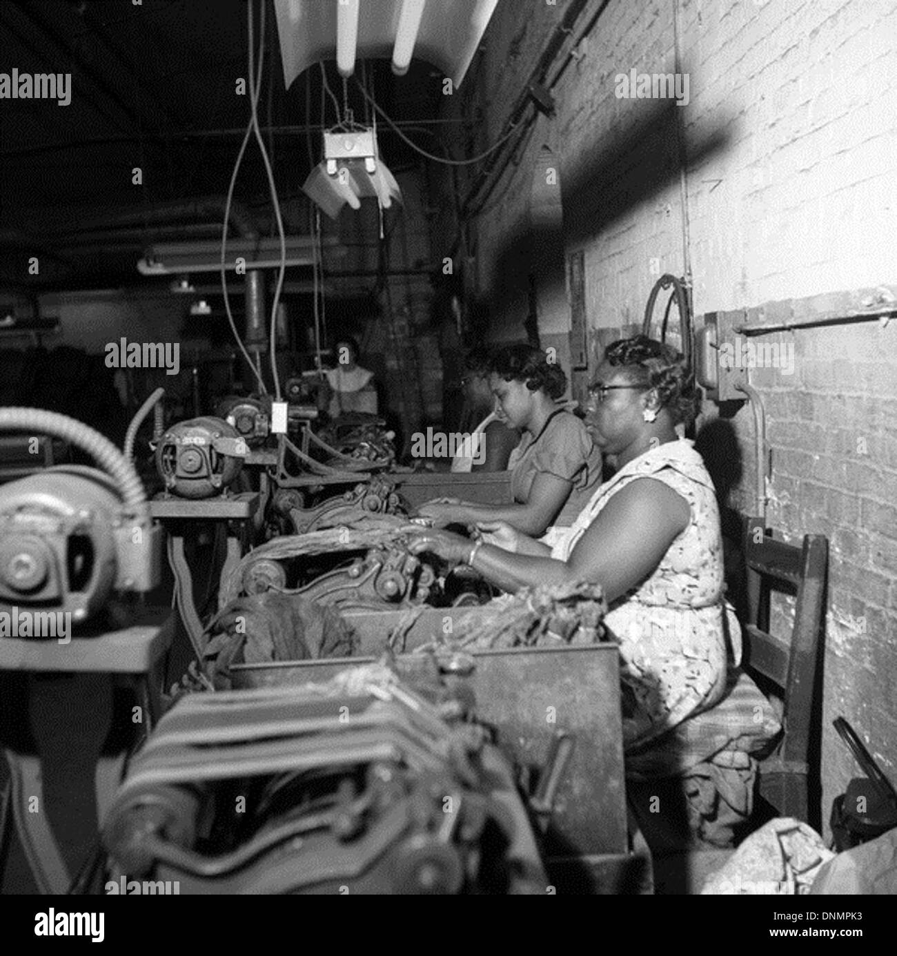 Workers processing tobacco leaves for the Florida Cigar Company in Quincy, Florida - Stock Image
