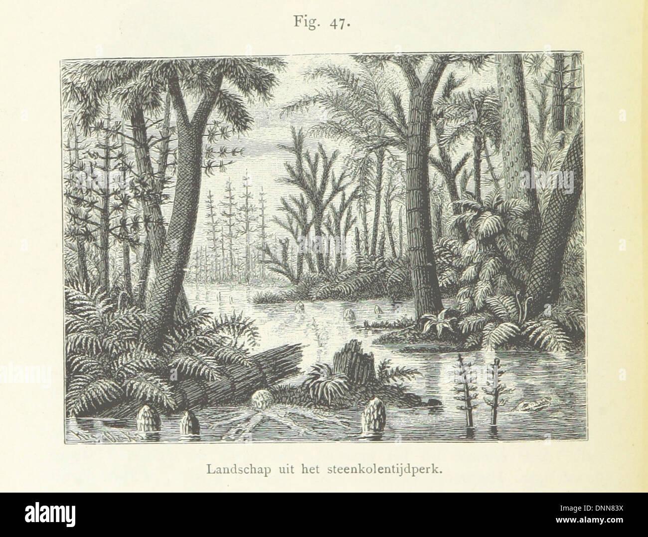 Image taken from page 182 of 'Onze aarde. Handboek der natuurkundige aardrijkskunde ... Met 150 platen en 20 kaartjes Stock Photo