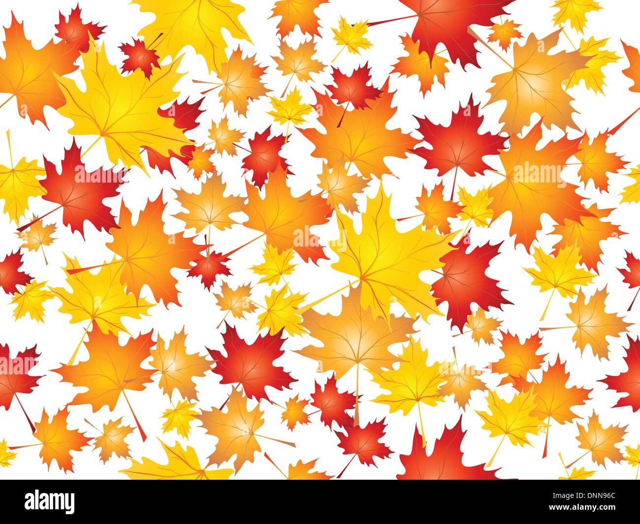 Background of falling Maple leaves - Stock Image