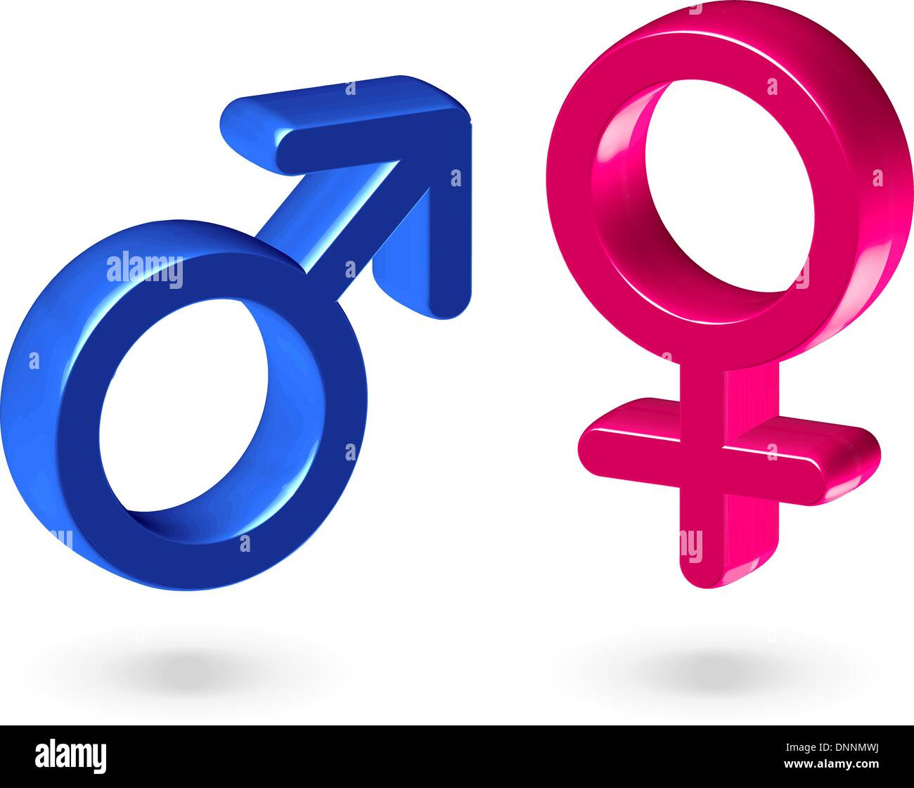 Male And Female Gender Symbols Isolated On White Background Stock