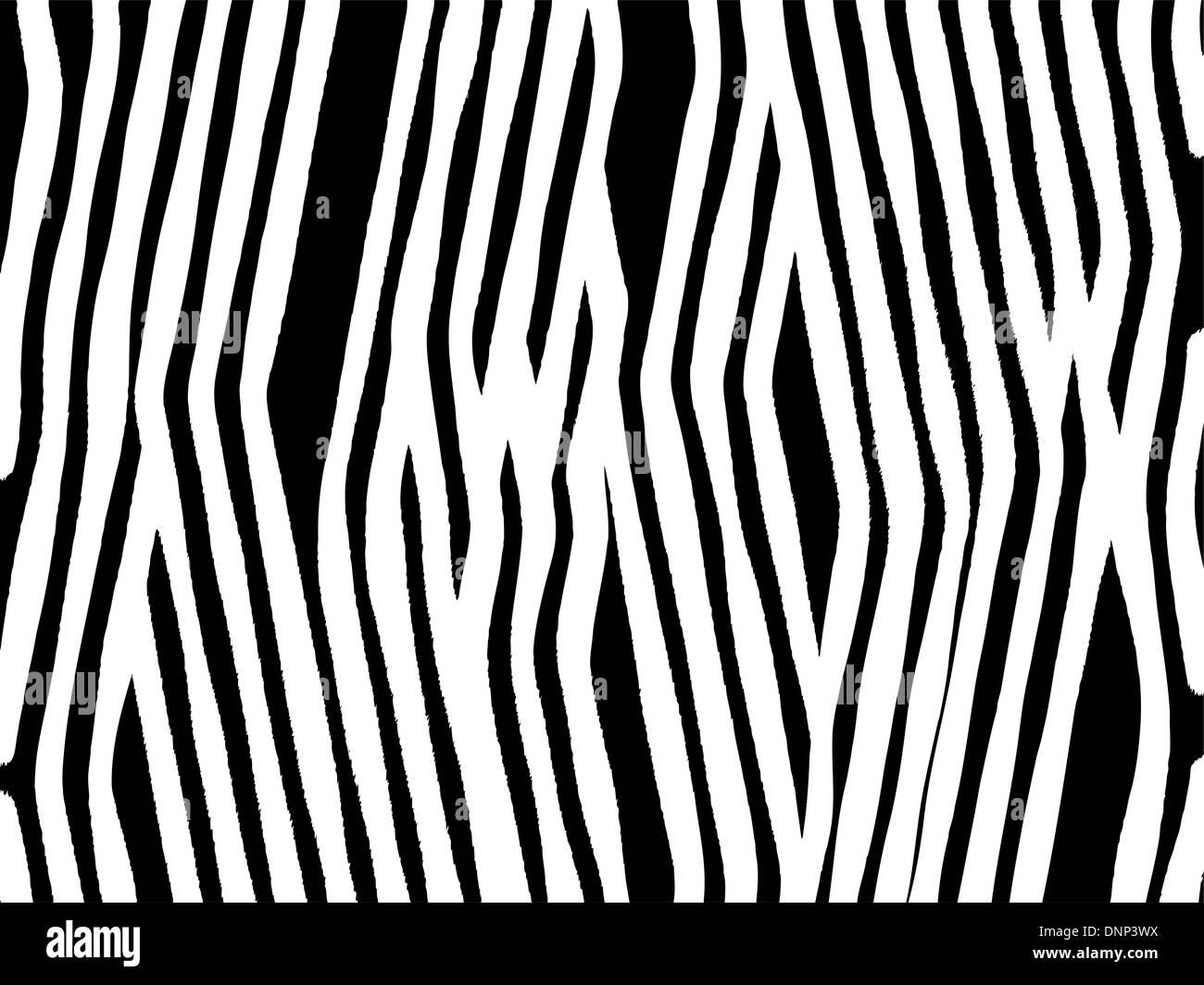 Zebra print background - Stock Image
