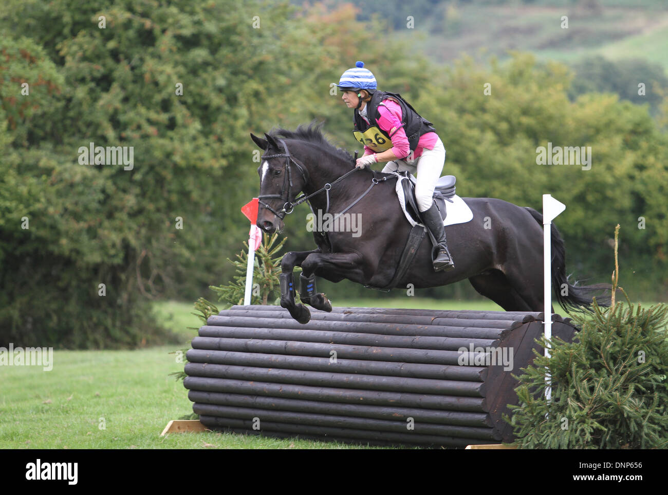 Horse and rider jumping a fence during the cross country phase of a one day event - Stock Image