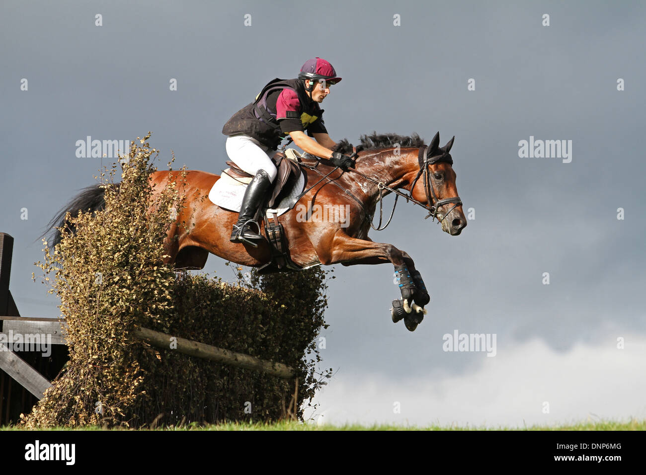 Horse and rider jumping a fence, from a low vantage point looking upwards a dark stormy sky - Stock Image
