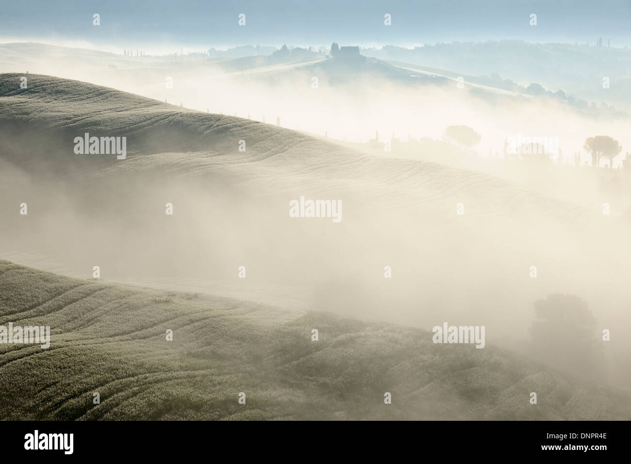 Landscape in morning with fog, near San Quirico d'Orcia, Val d'Orcia, Orcia Valley, Siena District, Tuscany, Italy Stock Photo