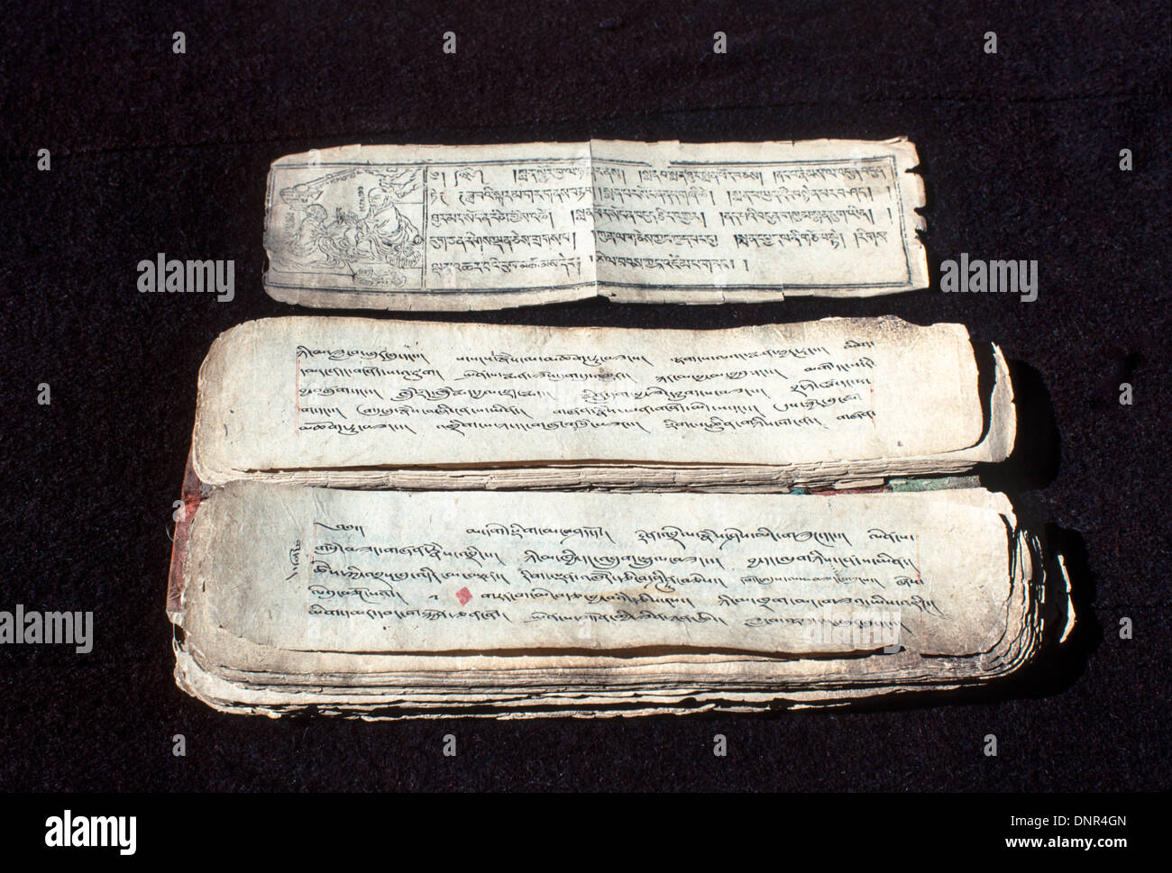 Sacred Tibetan medical text used by local and itinerant