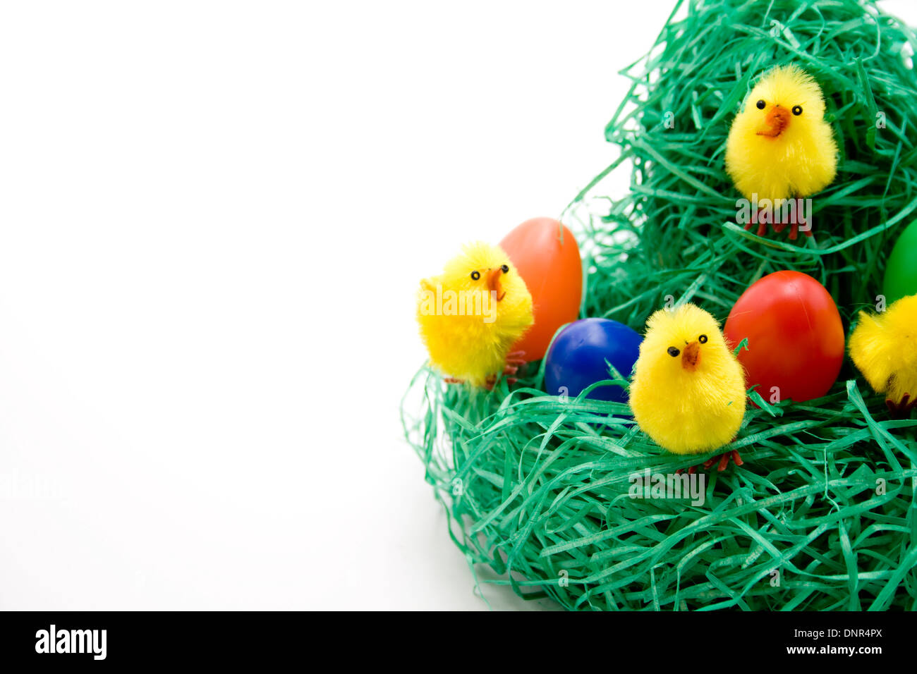 Easter fledglings with Easter eggs - Stock Image