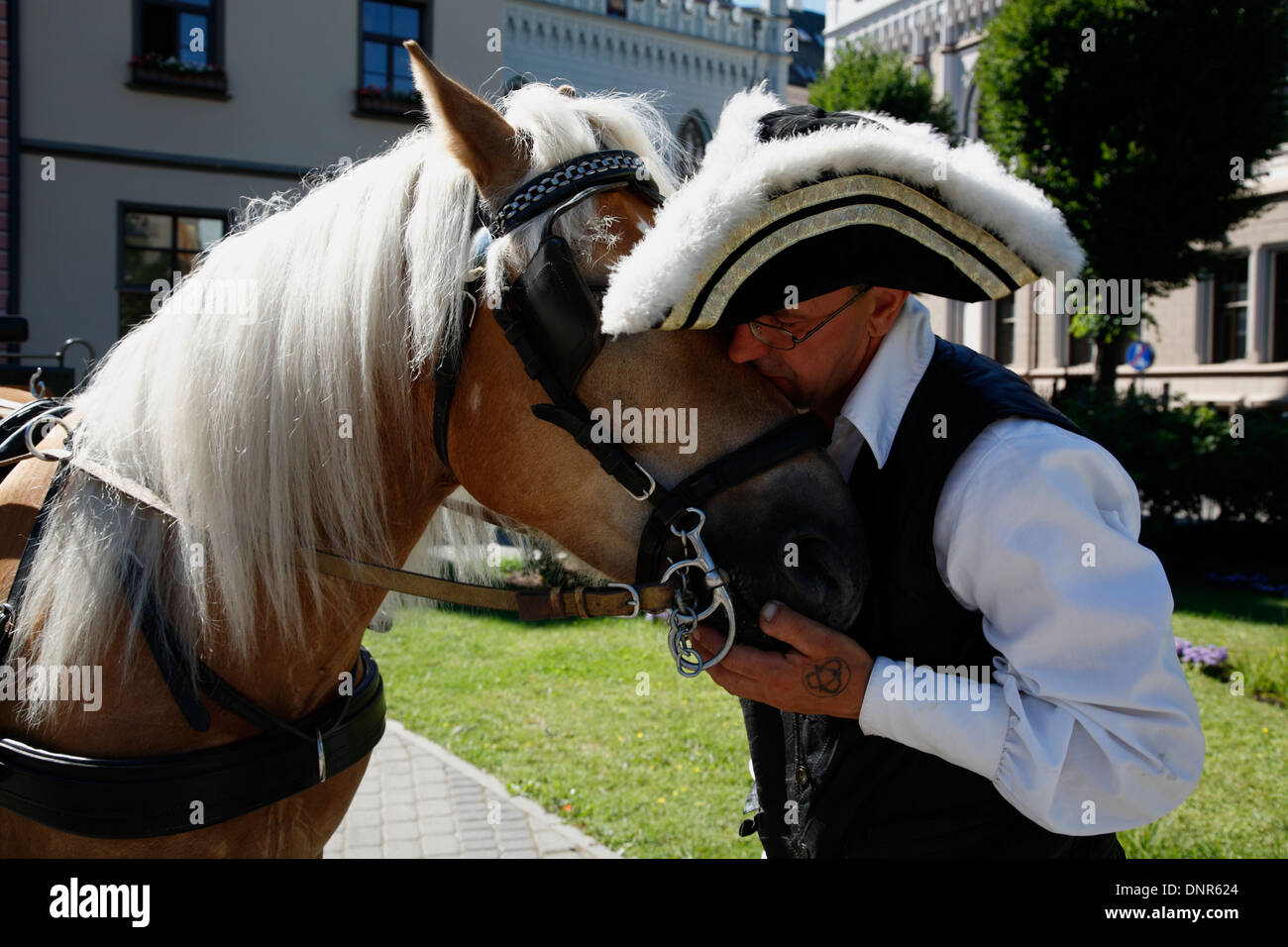 Coachman and his carriage Horse , old town, Riga, Latvia, Europe - Stock Image