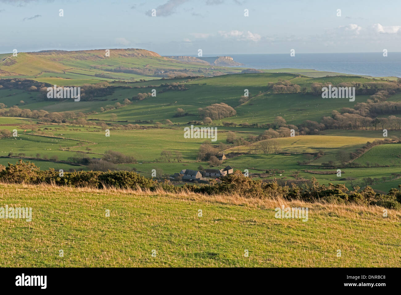 Countryside Views Of Tyneham And Surrounding Areas Including The Jurassic Coast From Povington Viewpoint. Doset, England, Uk - Stock Image