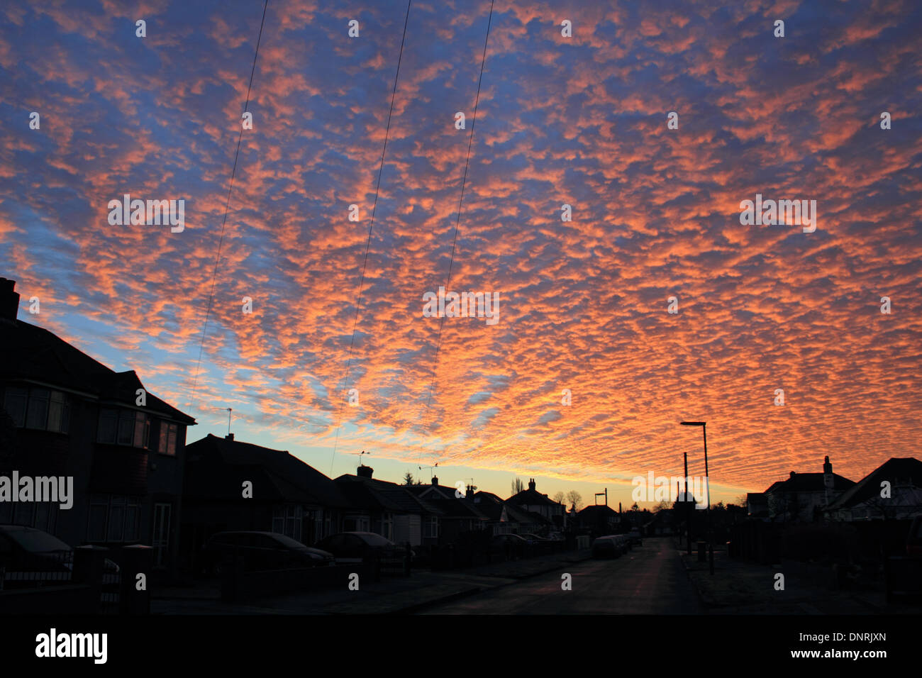 Epsom, Surrey, UK. 5th January 2014. Red sky in the morning - shepherds warning! Could the old English saying be a sign of the weather to come? Spectacular altocumulus mackerel cloud formations at sunrise over Surrey. Credit:  Julia Gavin/Alamy Live News - Stock Image