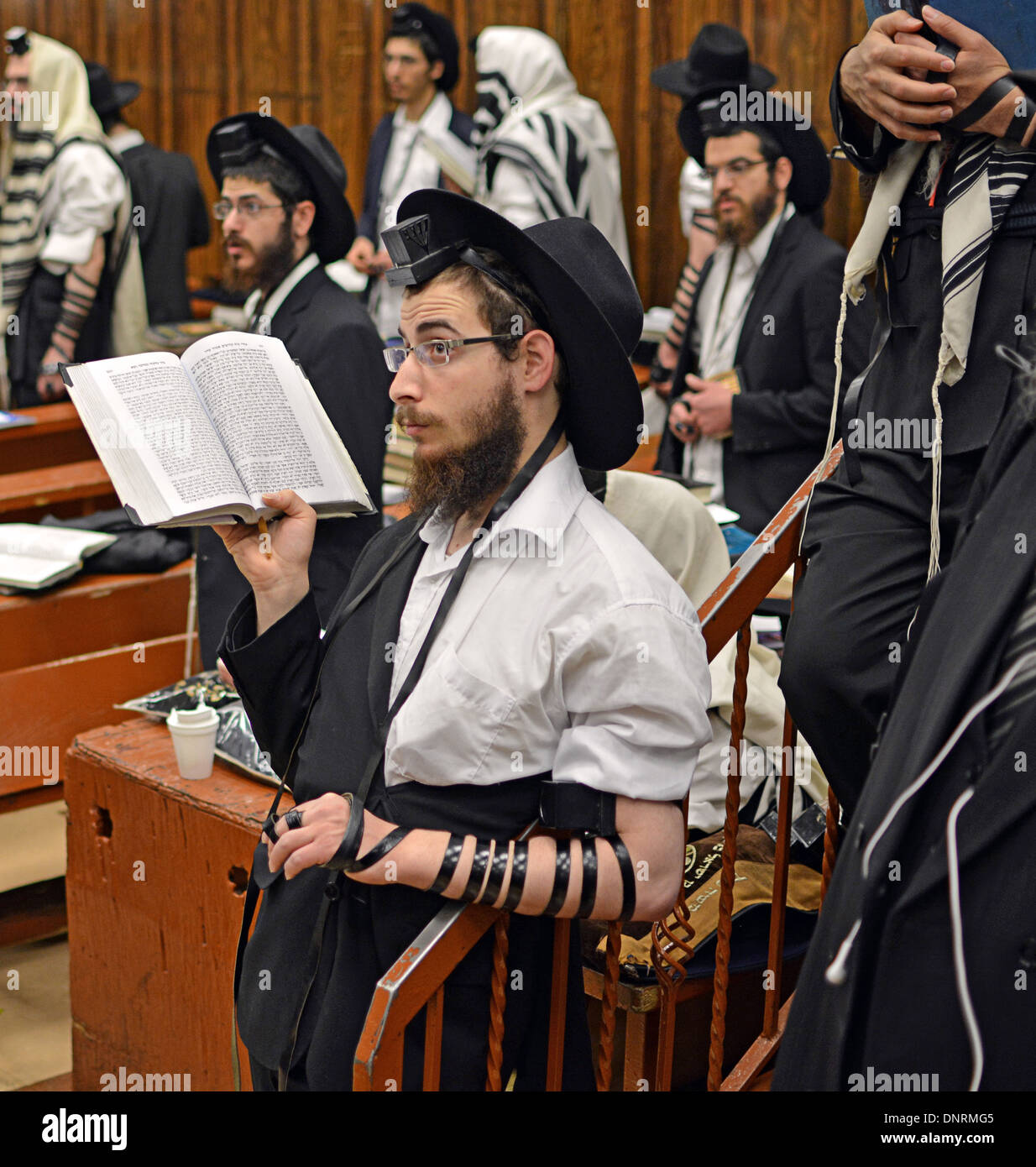 Religious young Jewish men at morning prayers at the Lubavitch headquarters in Crown Heights, Brooklyn, New York - Stock Image