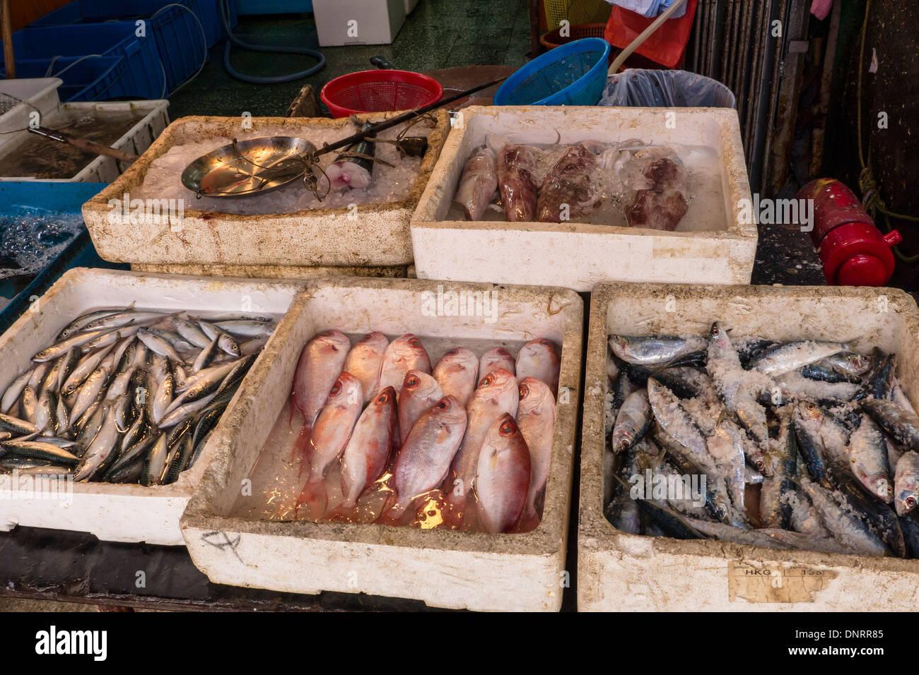 Seafood Market, Lantau Island, Hong Kong, China - Stock Image