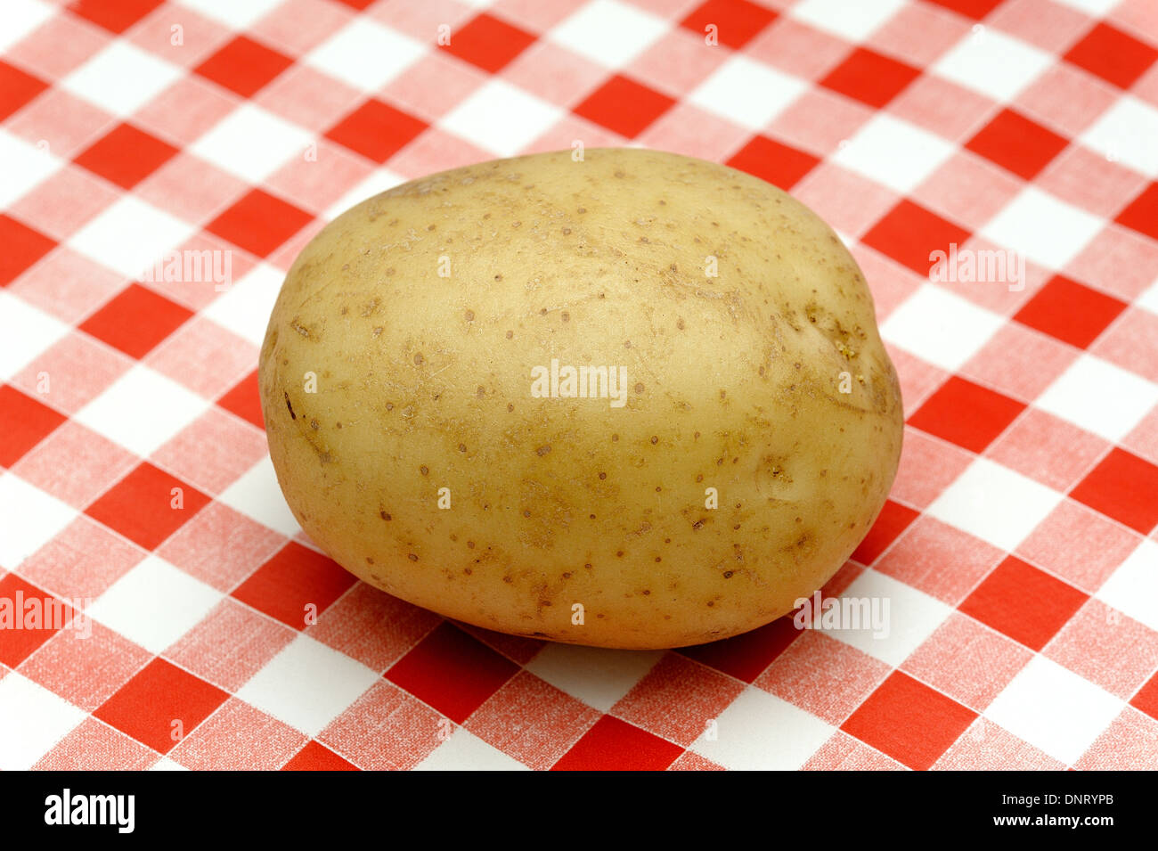 white potato on a red gingham tablecloth background - Stock Image