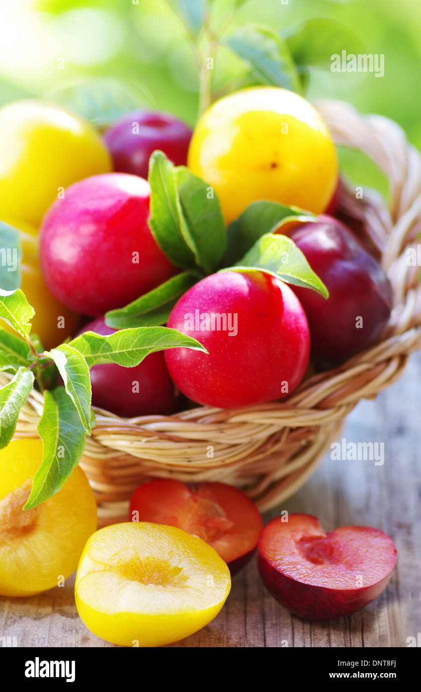 Ripe plums in the basket on table - Stock Image