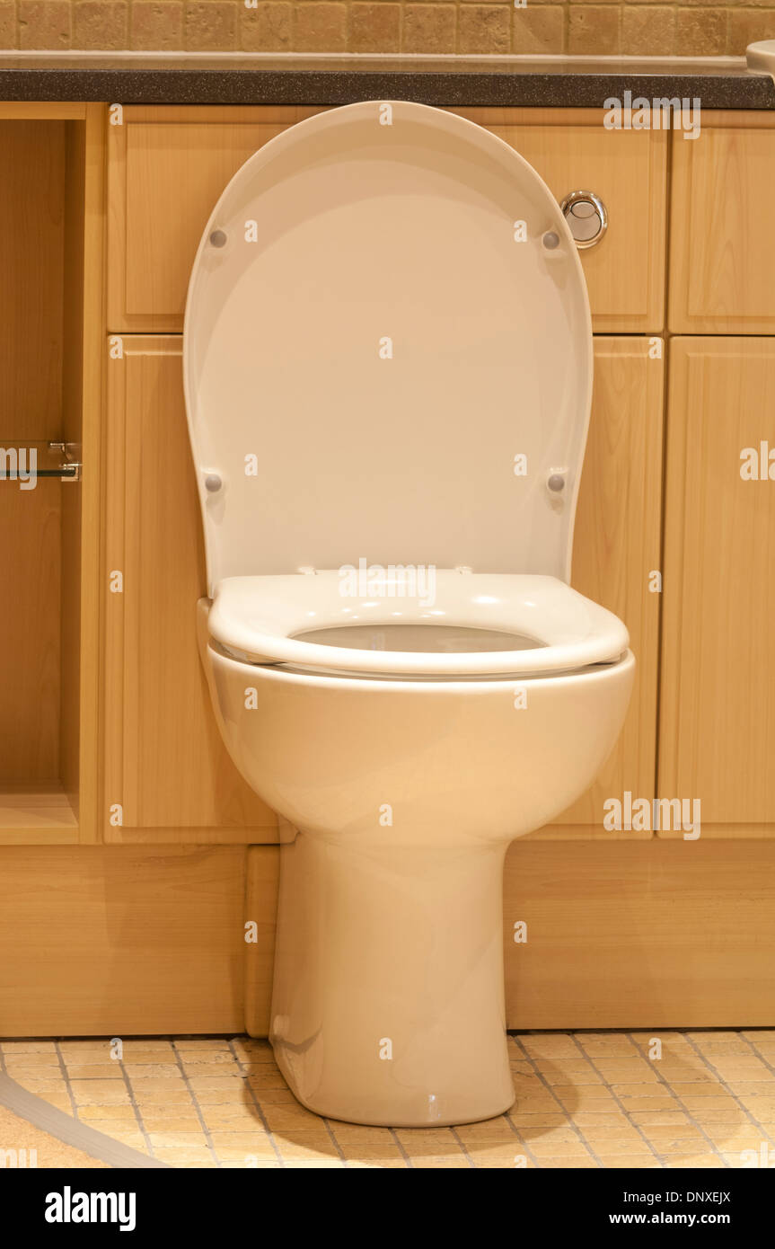 Incredible Toilet With Lid Up And Seat Down Stock Photo 65121138 Alamy Ncnpc Chair Design For Home Ncnpcorg