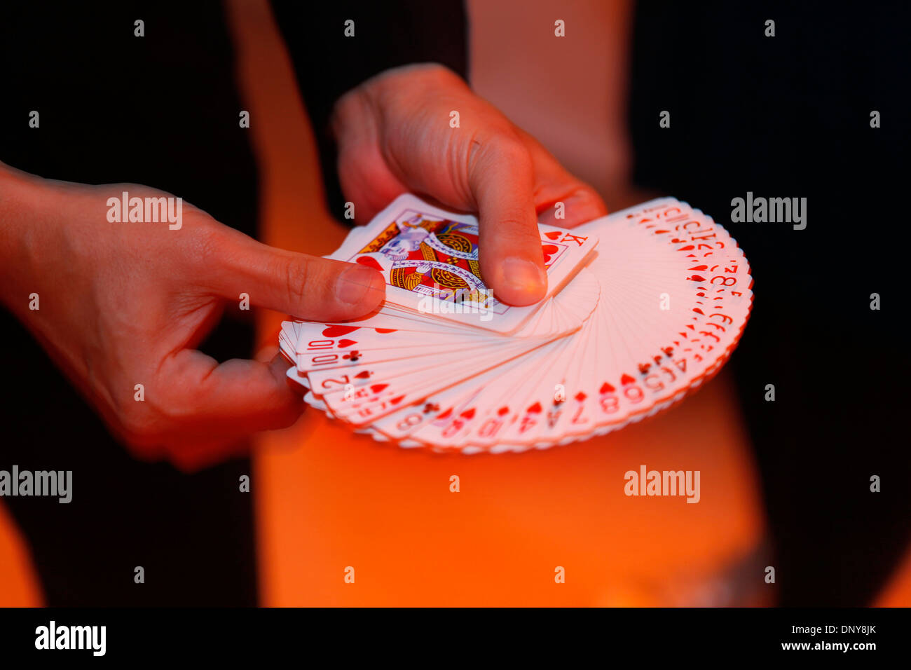 Conjurer fanning cards only showing the red suites - Stock Image