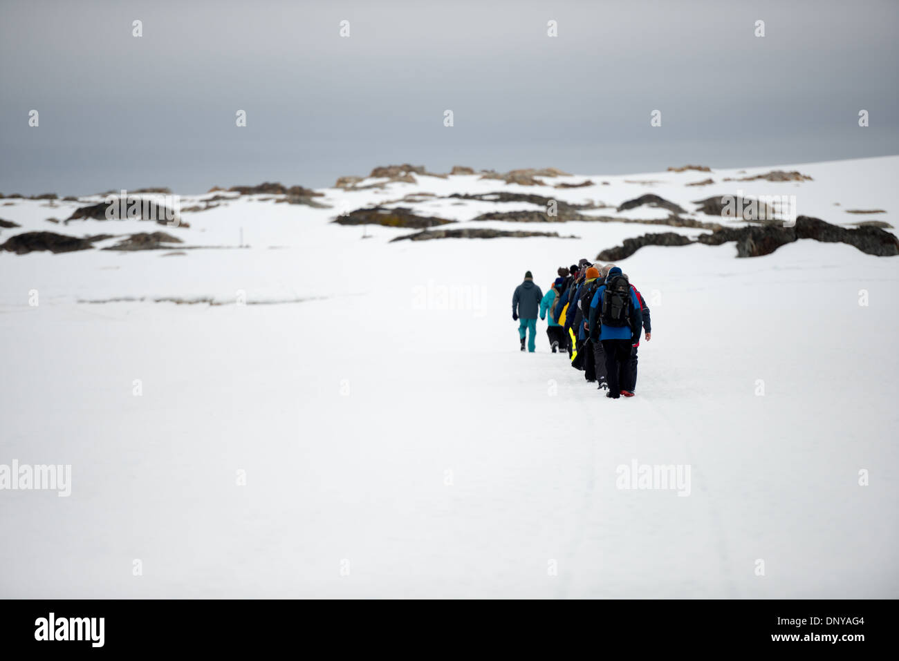 ANTARCTICA - A line of tourists walk in single file across the sea ice towards Wordie House in Antarctica. - Stock Image