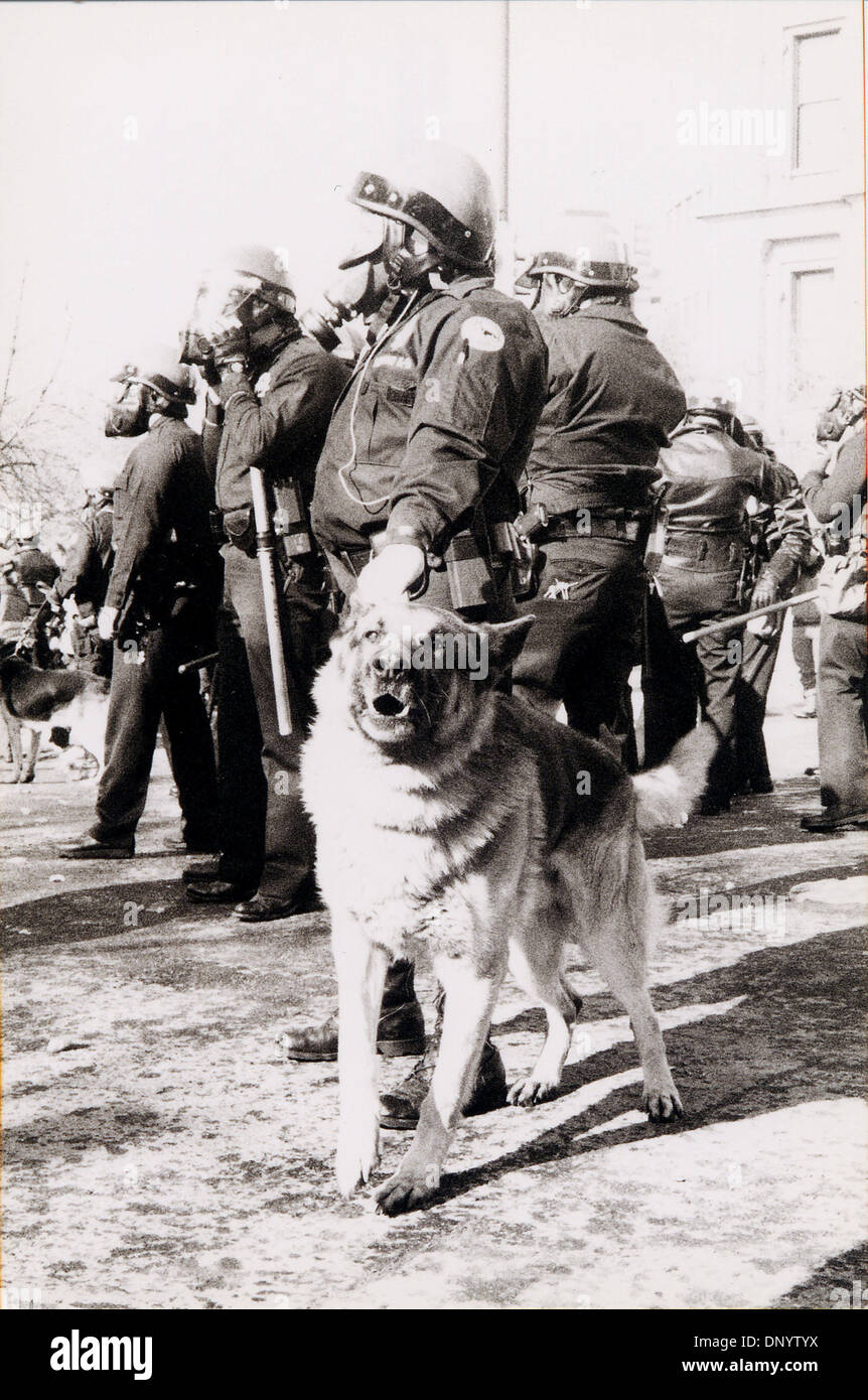 Feb 10, 2006; Dallas, TX, USA; (FIle Photo: Date Unkown) Guard Dog Barking during riots. Mandatory Credit: Photo - Stock Image