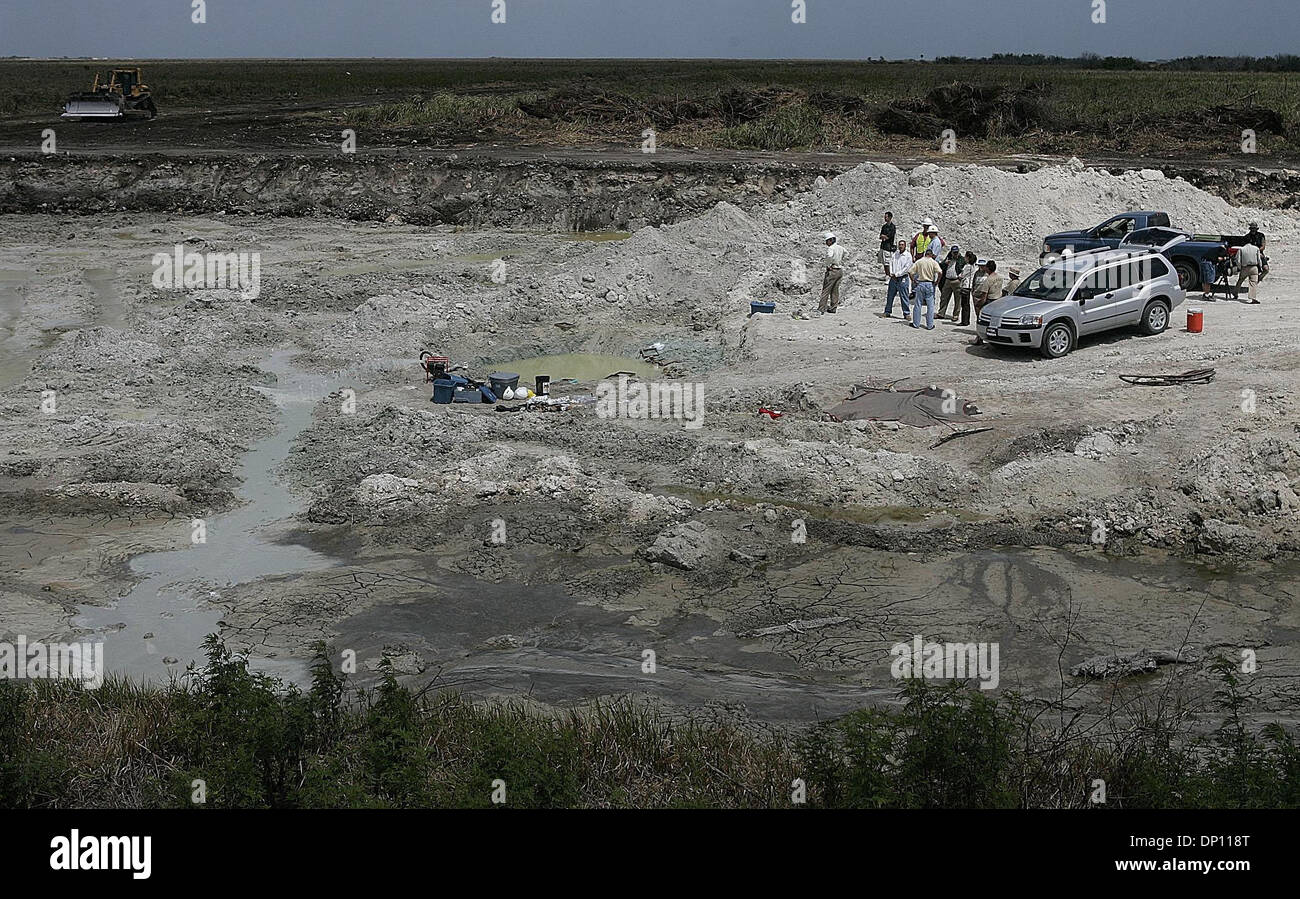 Apr 11, 2006; Everglades, FL, USA; Massive bones of what experts believe belonged to one or several ancient giant Stock Photo