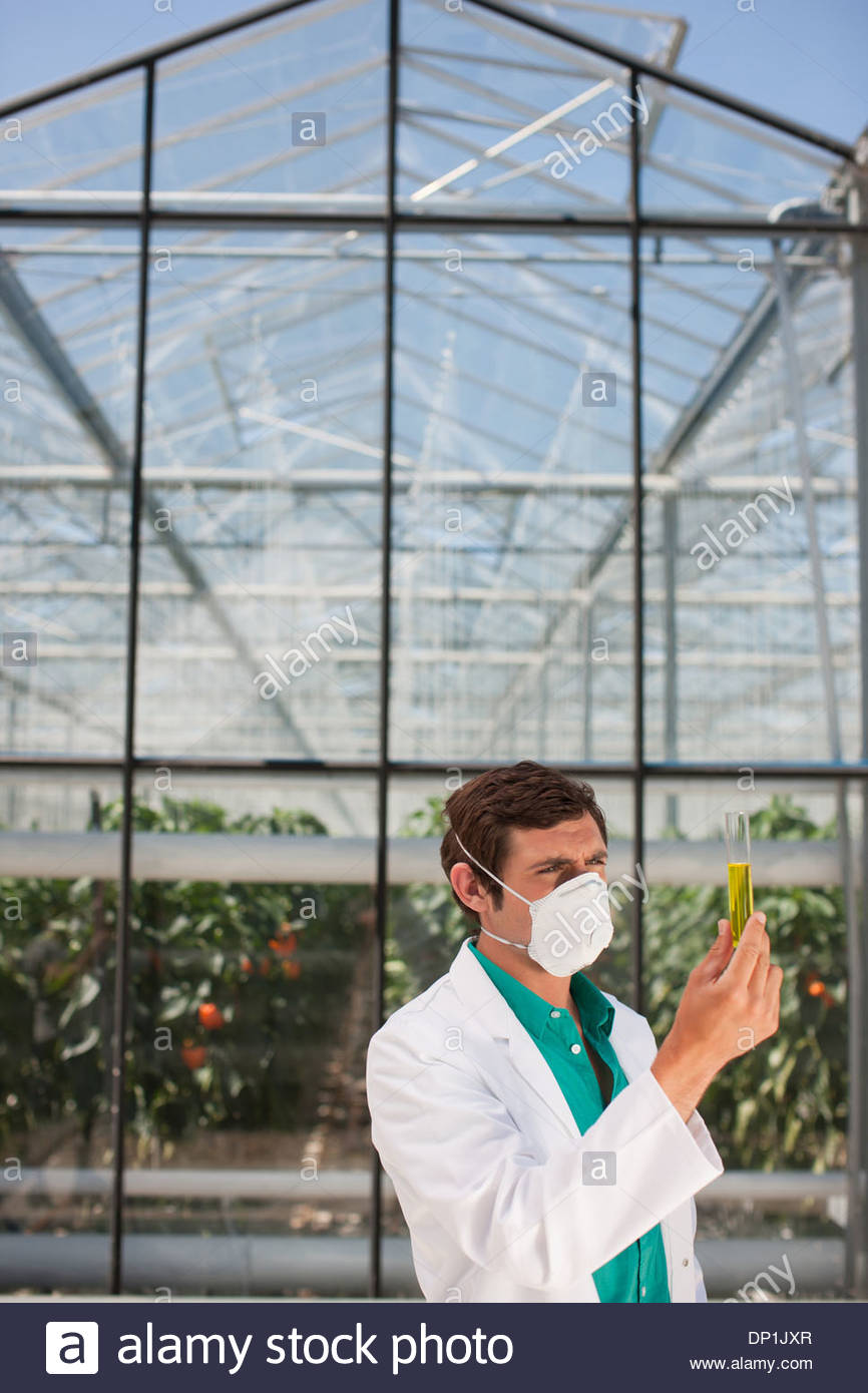 Scientist in mask examining liquid in test tube - Stock Image