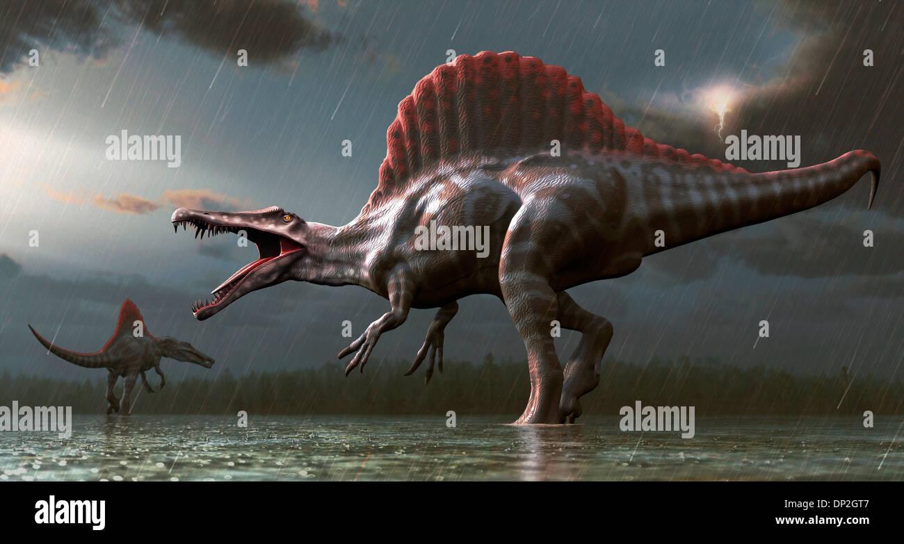 Artwork of a spinosaurus dinosaur - Stock Image