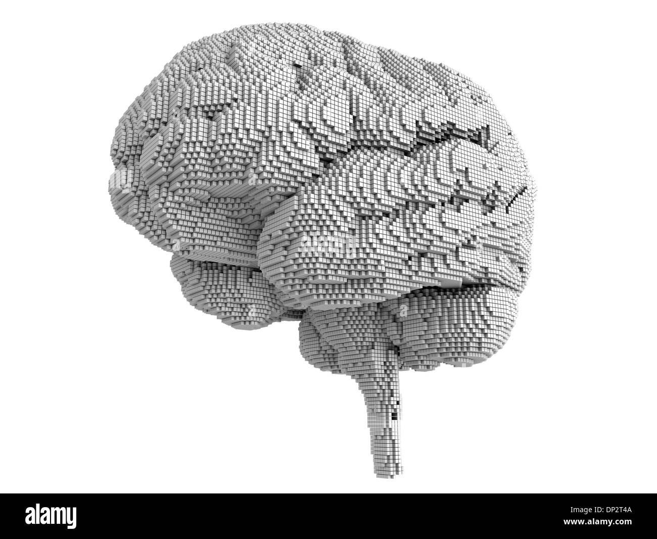 Brain pixelated, artwork - Stock Image