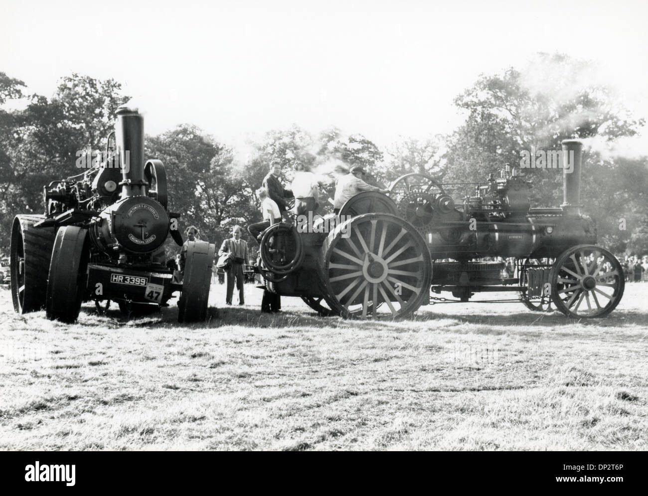 steam traction engines at a rally in the 1950s - Stock Image