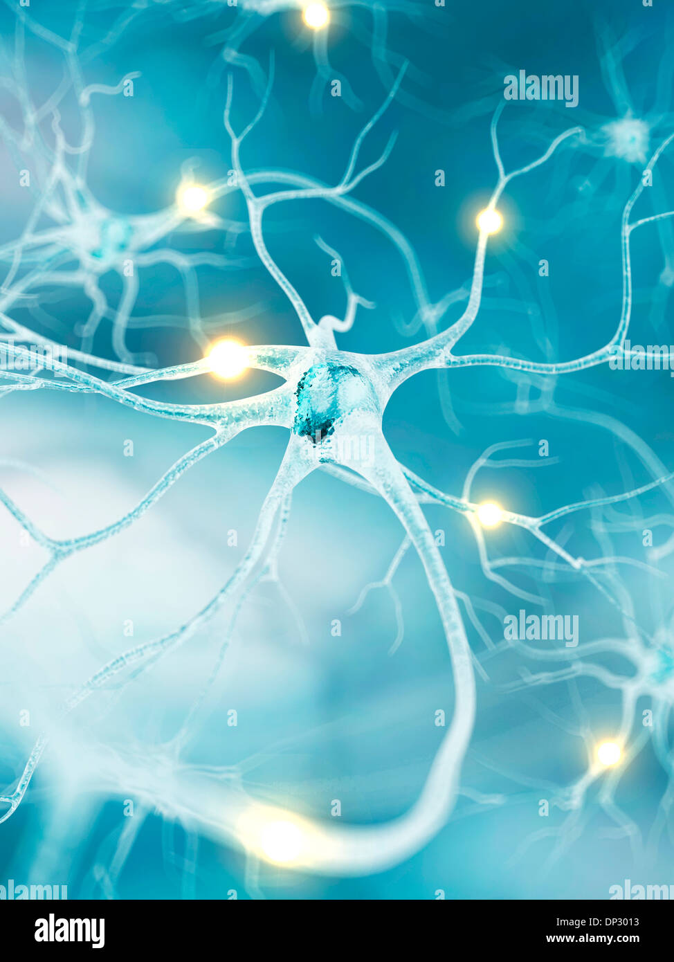 Active nerve cells, artwork - Stock Image